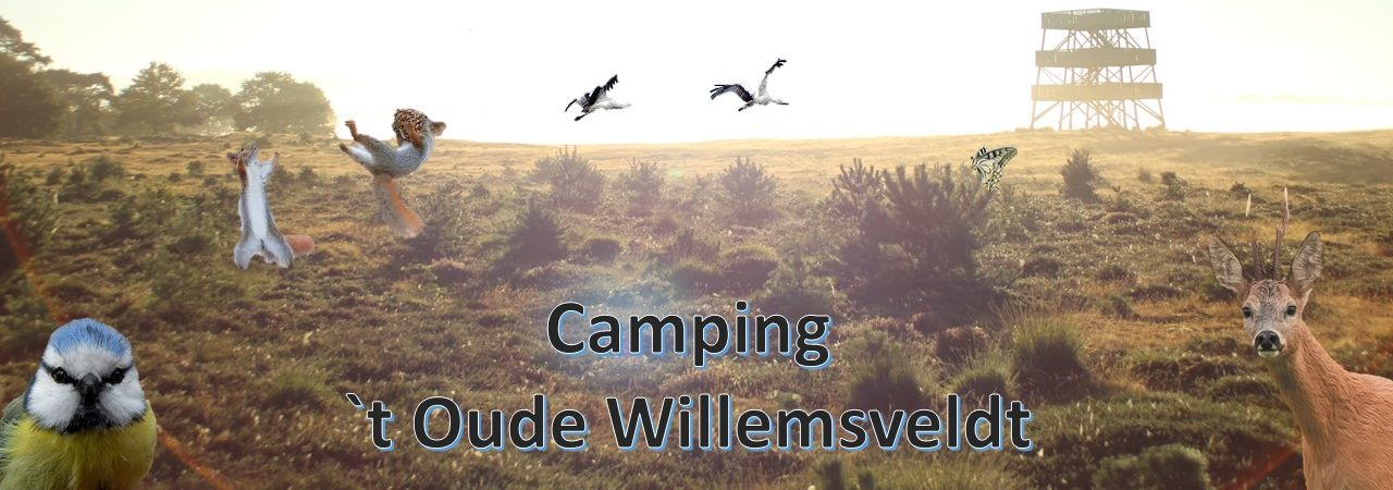Camping 't Oude Willemsveldt